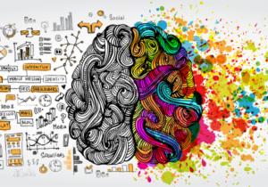 herprogrammeren van je brein